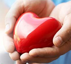 Оздоровительная программа  «Здоровые сердце и сосуды»